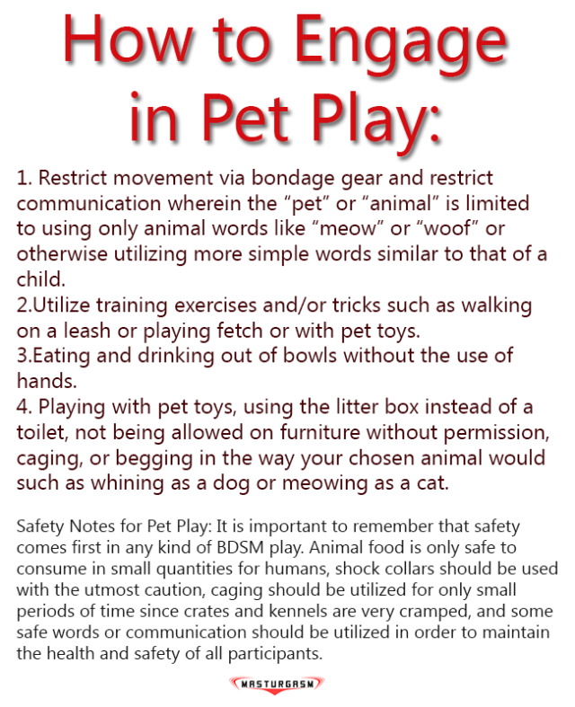 masturgasm_guide_to_pet_play_2_2015